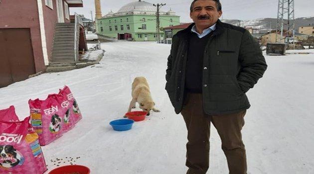 BELDE SAHİP ÇIKARKEN BELEDİYELERİN MAMALARI HARDA?!.