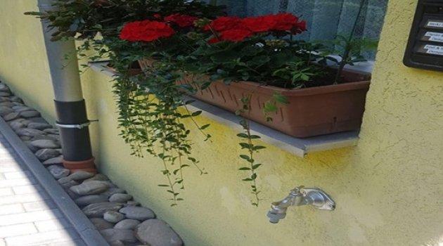 Corona Balkonlarda Gül ve Çiçek Açtı!..