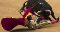 Çıldır Boğası İspanyol Boğasına Heveslenince! 1 Kişi Öldü..