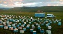 Karadeniz Arıları Ardahan'da..