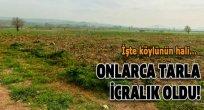 ARDAHAN'DA İPOTEKSİZ KREDİLER KEFİLLERİ DE İCRALIK ETTİ!..