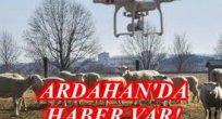 KURTLAR YİYERKEN JANDARMA DRONU KURTARDI!