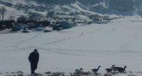 Ardahan'da Soğuk Haberler!..